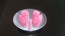 ASHTRAY COUGHING LUNG TYPE, GIFT FOR SOME ONE GIVING UP x 2 Ashtrays